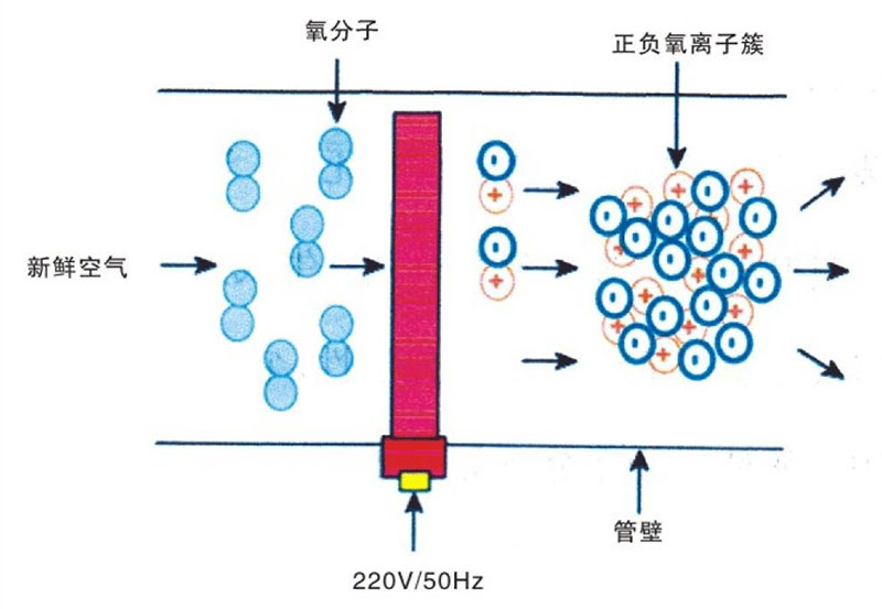 活性氧离子除臭